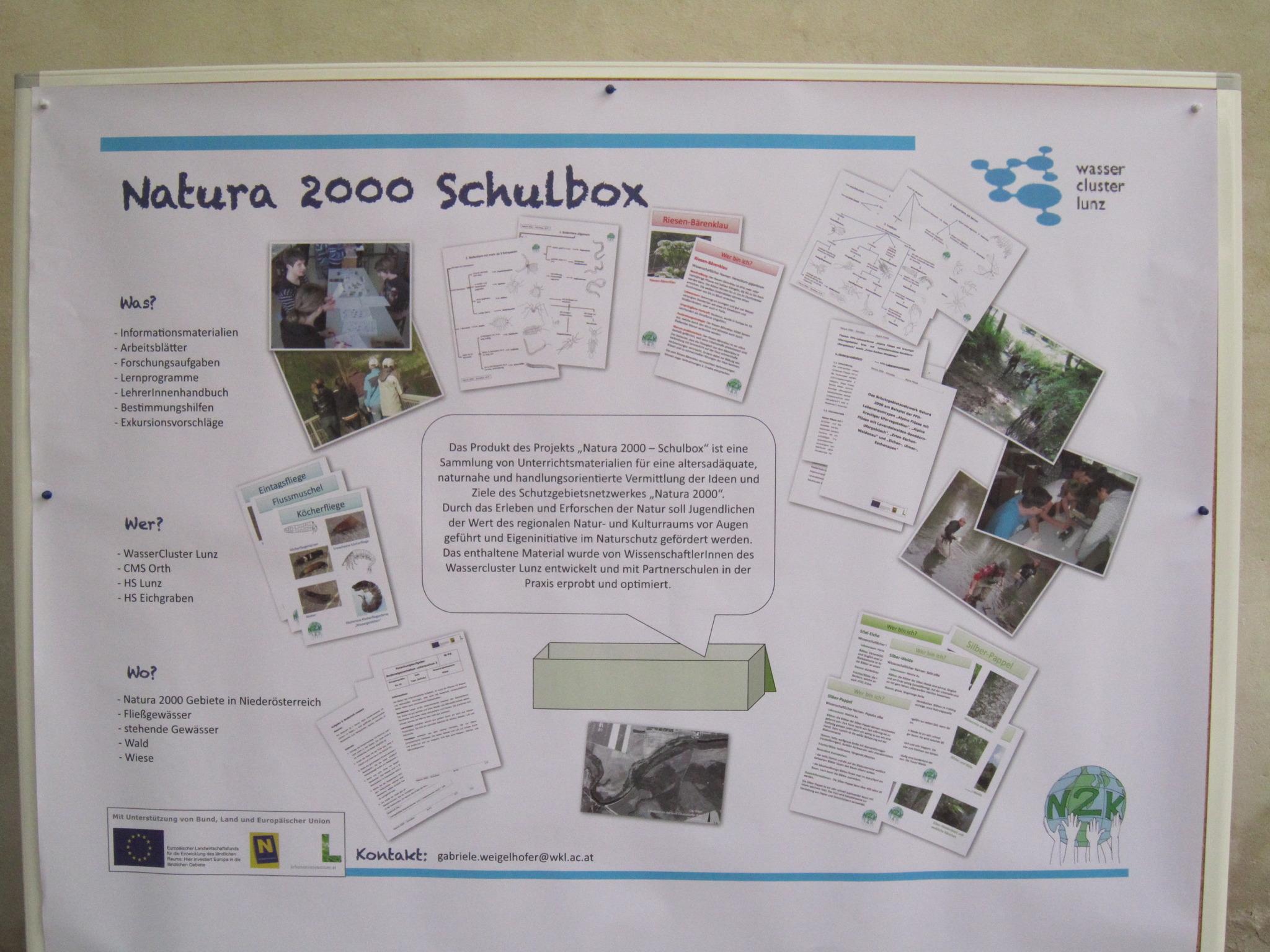 Familieinfest im Nationalpark und andere Frühlingsfeiern - Gänserndorf