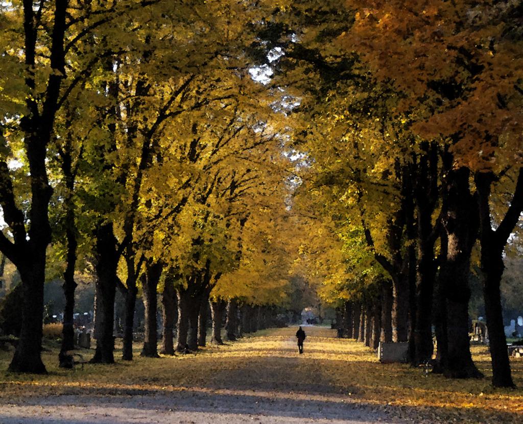 Spazierganger In Herbstlicher Allee Erinnert Mich An Das Gedicht