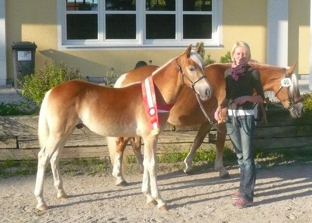 Sie sucht Ihn (Erotik): Sex in Kainbach - mysalenow.com