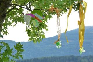 """Der erste Tiroler Schnullerbaum im Haller UMIT-Park hat noch ausreichend Platz für weitere """"Lullis"""""""