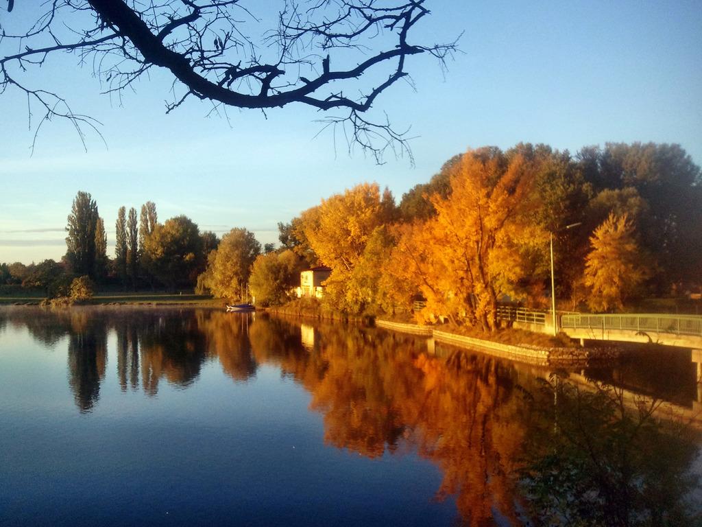 Ein Herbstmorgen An Der Oberen Alten Donau In Wien Donaustadt