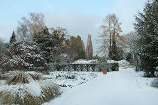 Botanischer Garten im Winter