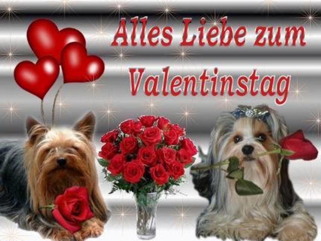 Wünsche Allen Einen Schönen Valentinstag Villach Land