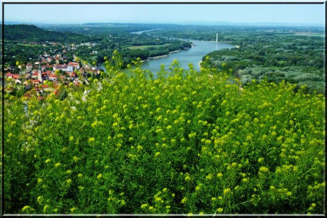 Er sucht Sie in Hainburg an der Donau - kostenlose