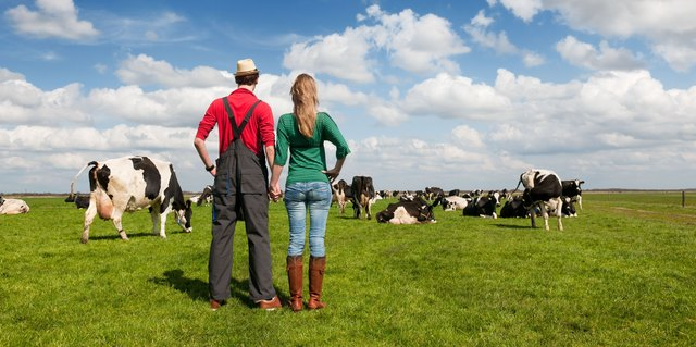Kostenlose partnersuche für landwirte
