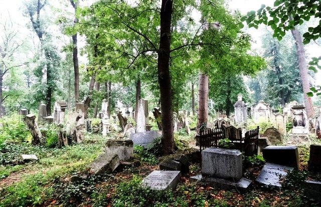 Dieses im Herbst aufgenommene Foto zeigt: Der Verfall des Friedhofs ist zum Teil weit fortgeschritten.