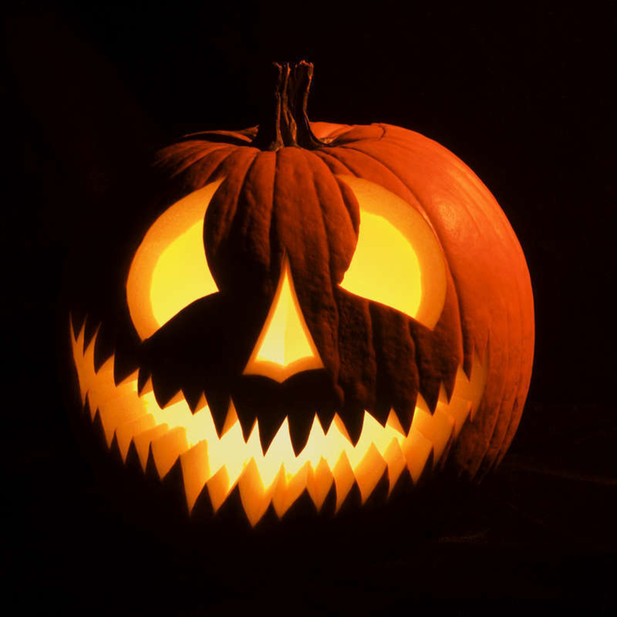 Woher Kommt Halloween : woher kommt halloween kufstein ~ A.2002-acura-tl-radio.info Haus und Dekorationen