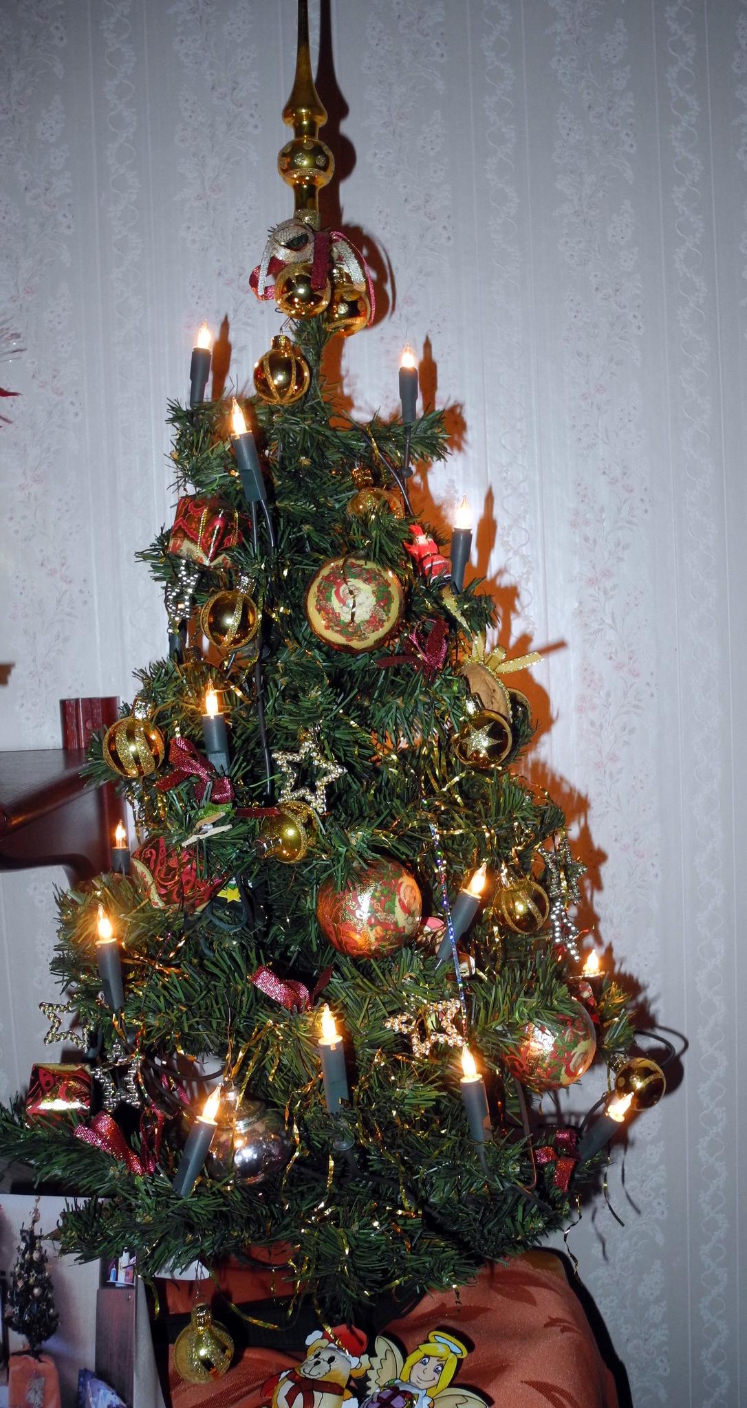 Der Weihnachtsbaum.Der Weihnachtsbaum Favoriten