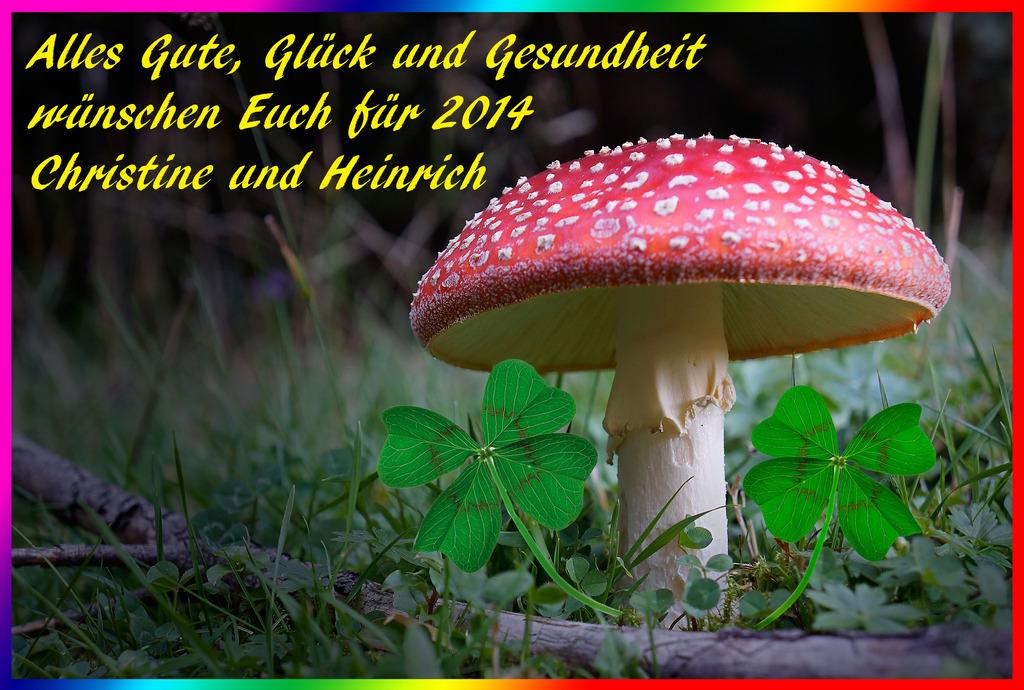 Wir wünschen Euch allen einen guten Rutsch ins neue Jahr! - Korneuburg