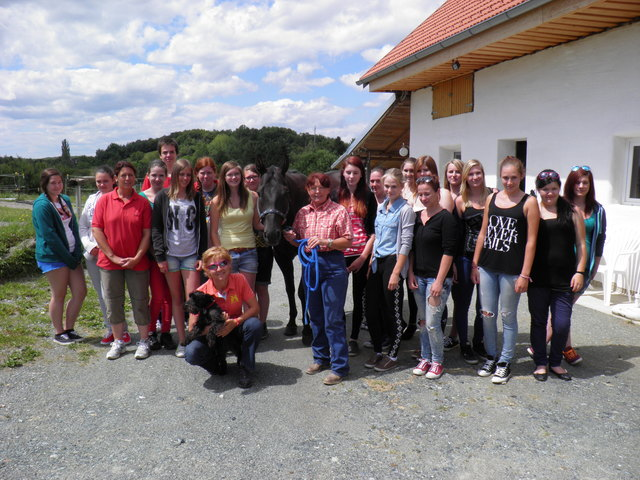 Tiere & Tierbedarf Gssing - zarell.com - Kleinanzeigen