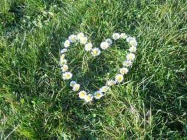 Als single aus saalfelden am steinernen meer - Freizeit