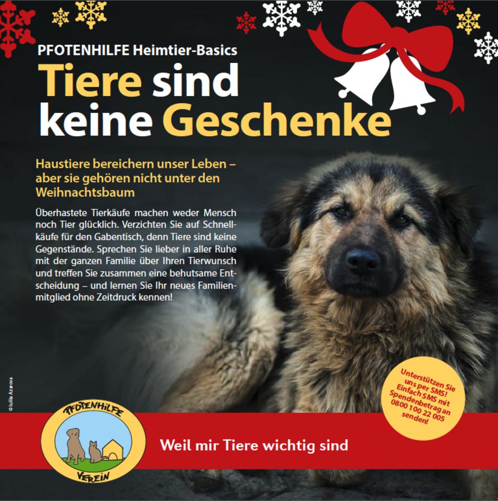 Tiere sind keine Weihnachtsgeschenke - Rudolfsheim-Fünfhaus