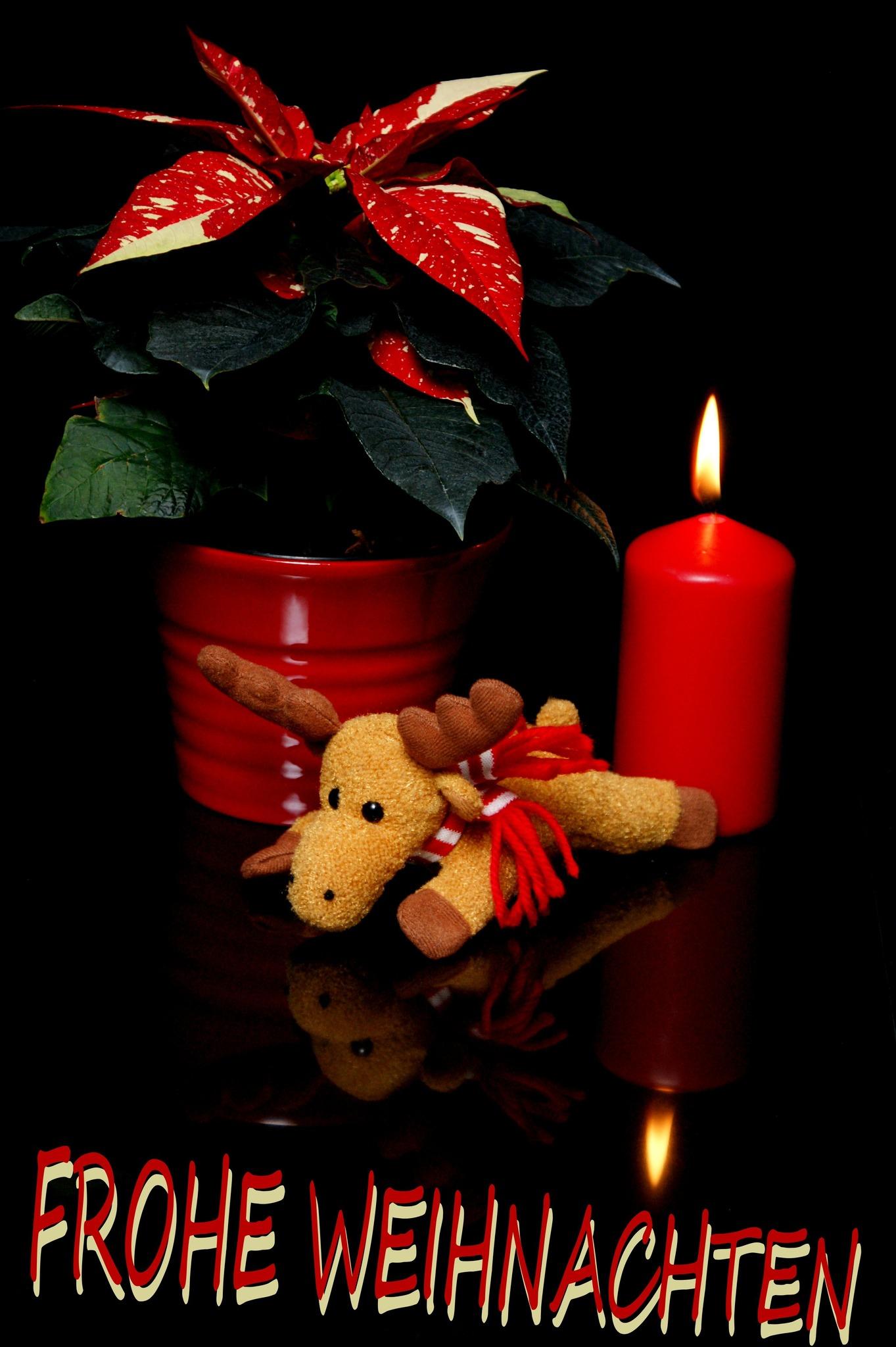 Wünsch Euch Allen Frohe Weihnachten.Wünsche Euch Allen Frohe Weihnachten Klagenfurt Land