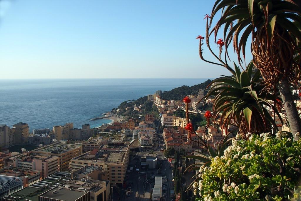 Ein Besuch Im Exotischen Garten Von Monaco Villach