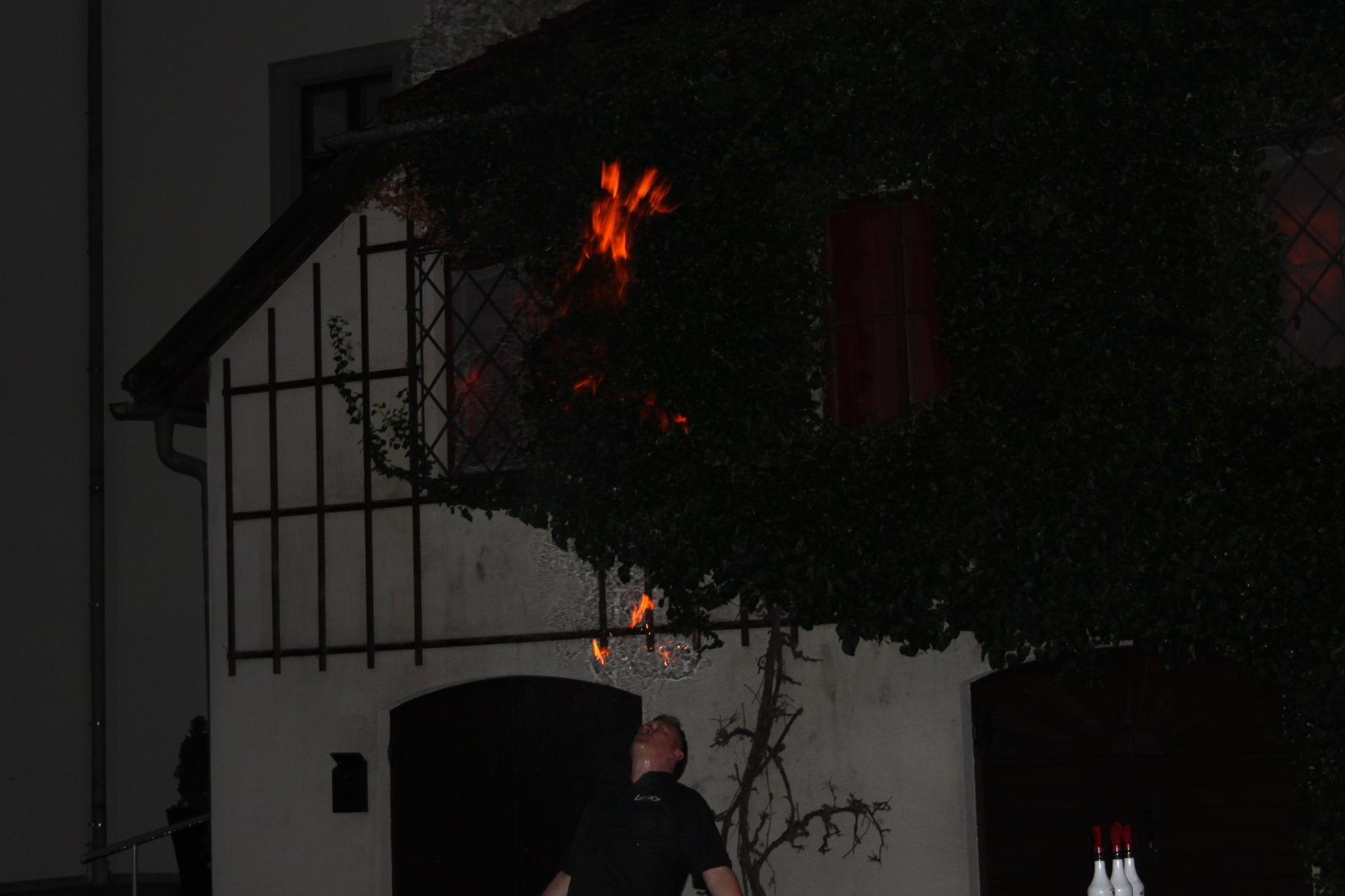 Foto 1 von 33:: Weihnachtsreiten Puchenau - zarell.com