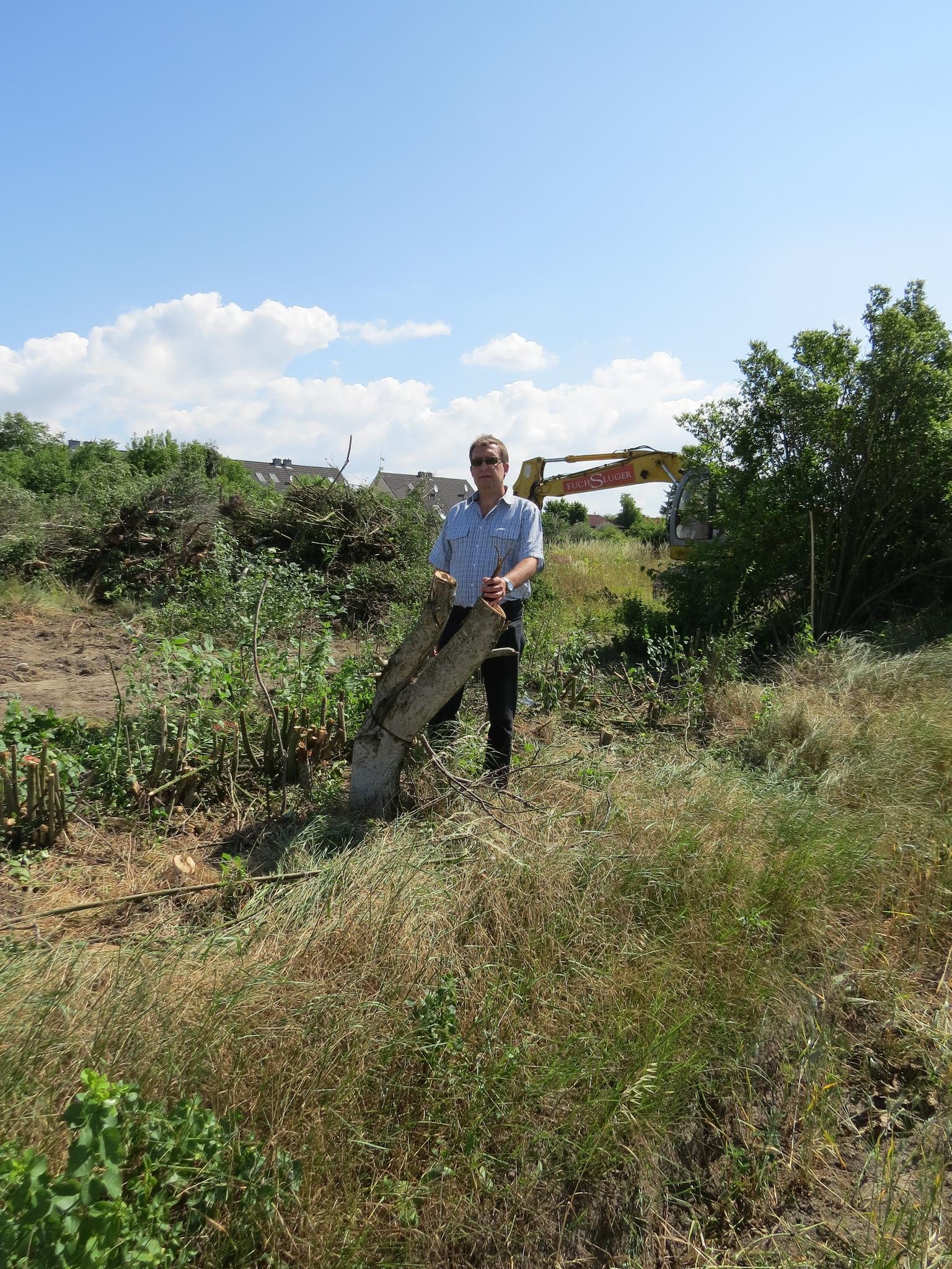 Waldrodung Verhindert Floridsdorf
