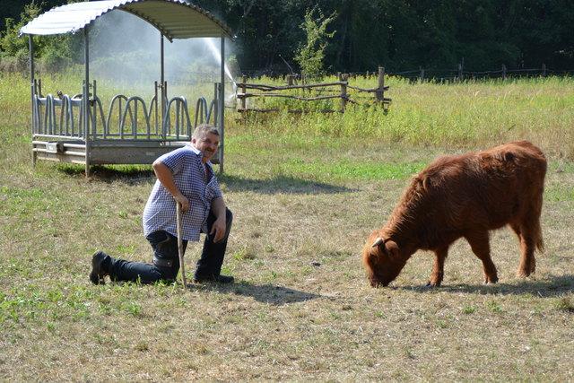 Manfred Ohnutek mit einem seiner Schottischen Hochlandrinder im Nationalpark Donauauen.