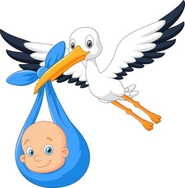 mit storch baby aufsteller den nachwuchs verkünden