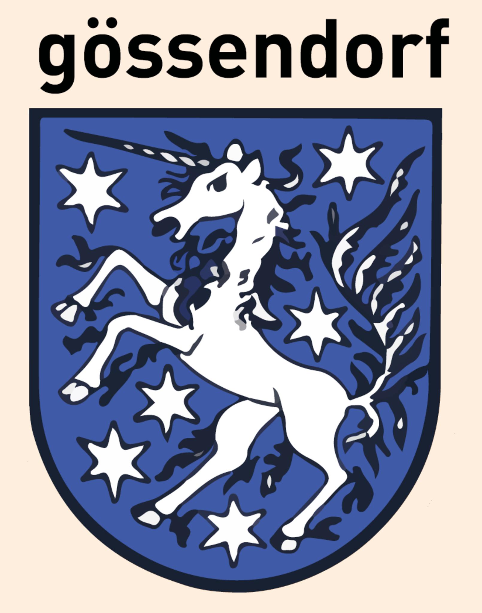 IVI Musikkurse - Marktgemeinde Gssendorf