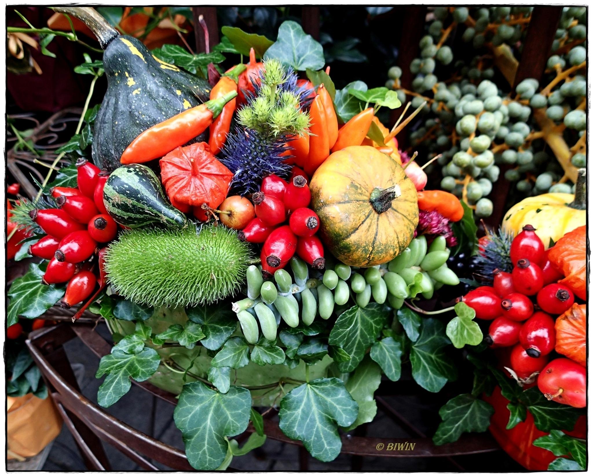 Herbstliches stilleben krems for Bilder herbstdeko