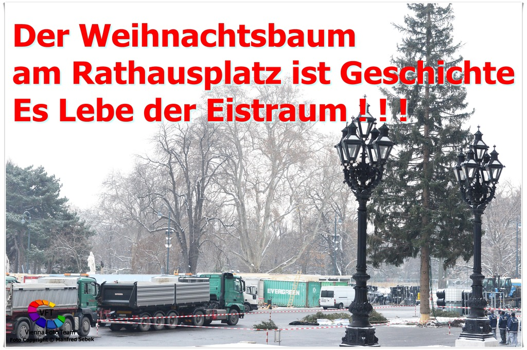 Der Weihnachtsbaum Geschichte.Der Weihnachtsbaum Am Rathausplatz Ist Geschichte Innere Stadt