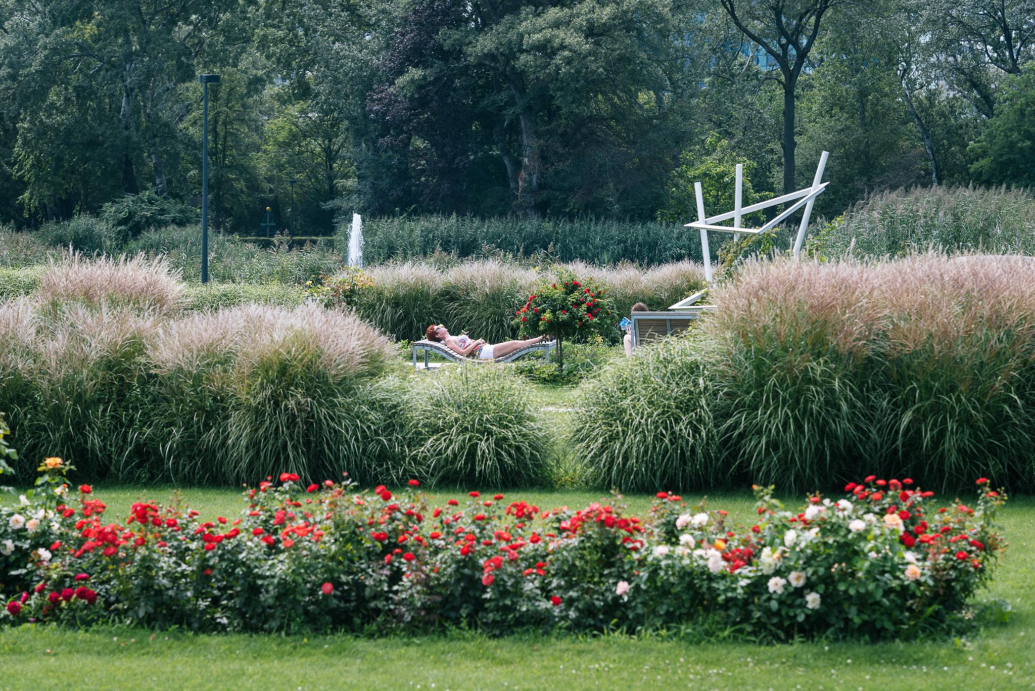 Nextland zeitgen ssische landschaftsarchitektur in sterreich salzburg stadt - Landschaftsarchitektur osterreich ...