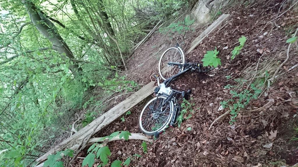 achten Sie auf verkauf usa online Outlet-Verkauf Fahrrad - Thema auf meinbezirk.at