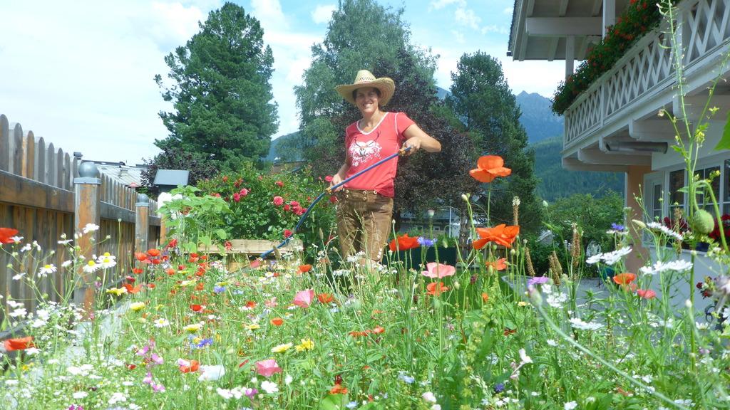 Die Schöne Blumenwiese Der Nachbarin Pinzgau