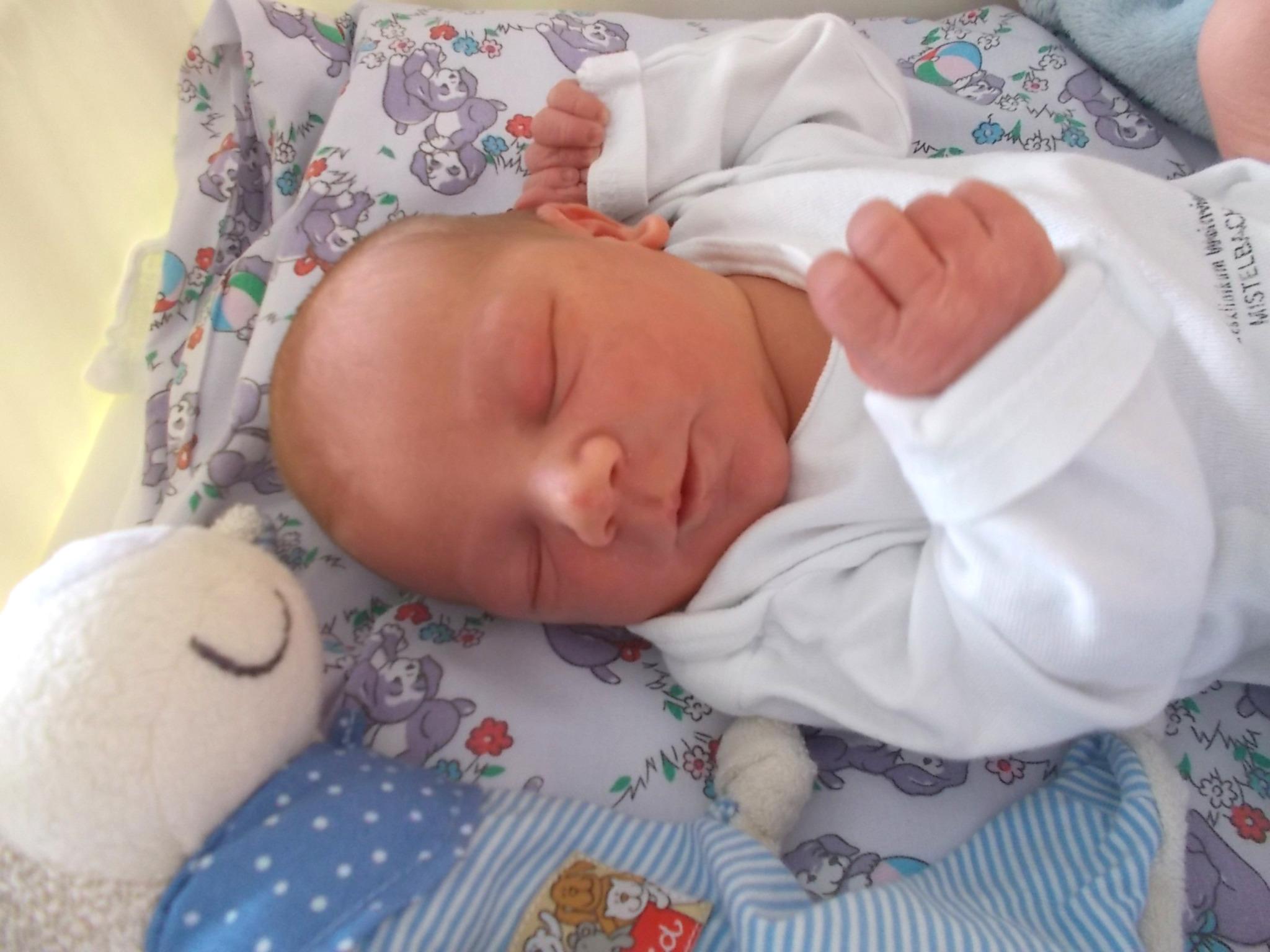 ced50d61f6 Babys der Woche 41 - Korneuburg