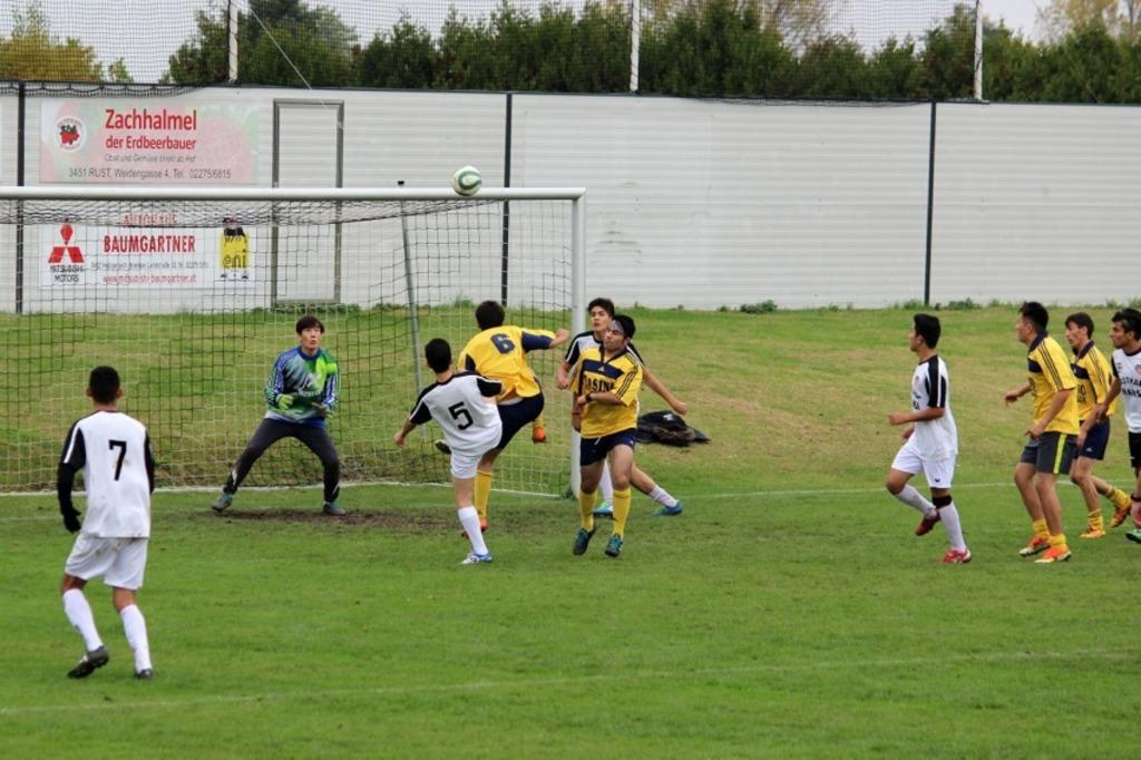 Netzwerk Michelhausen Fussball Verbindet Tulln