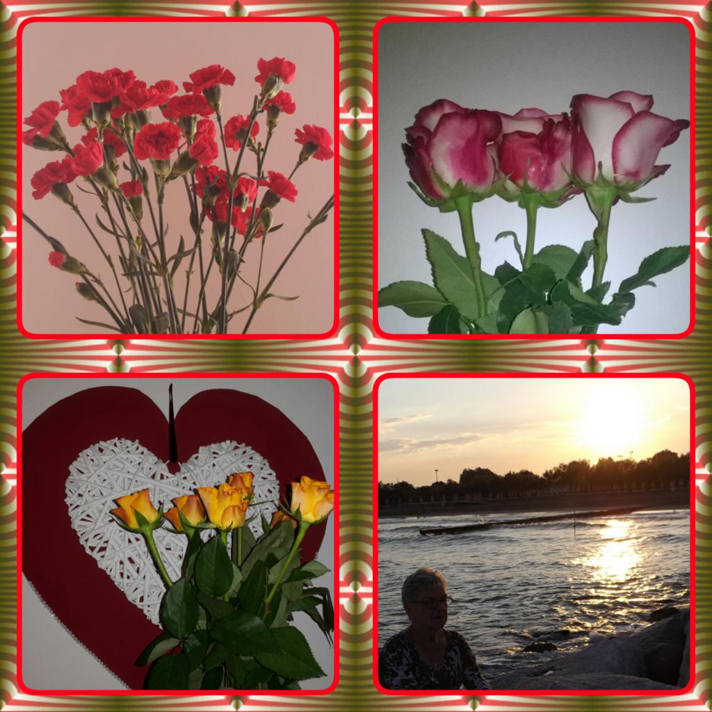 Liebe Sonja Alles Liebe Und Gute Zum Geburtstag Viel Gluck Und