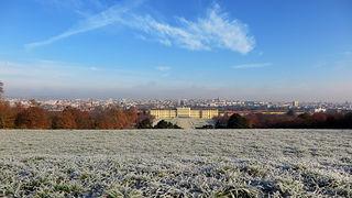 Morgenfrost in Schlosspark Schönbrunn