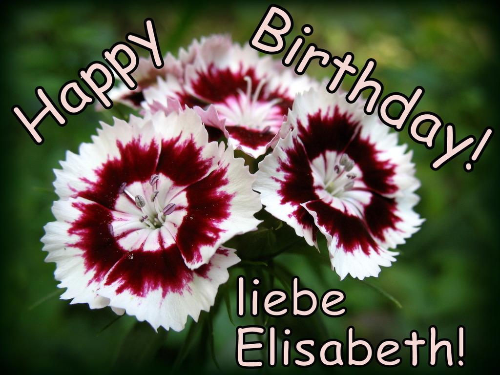 Herzlichen Glückwunsch An Unser Geburtstagskind Elisabeth