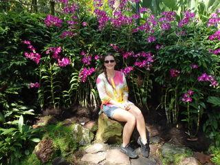 Viola im Orchideen-Garten von Singapur.