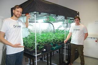 """Thomas Jaud (l.), der in Ried/I. lebt, mit seinem Mitarbeiter Marco Schweighofer in seinem """"Cannabis-Shop"""" in Schärding."""