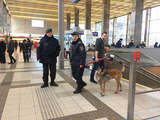 Mit Diensthunden will die Polizei ihre Präsenz am Bahnhof offensichtlich noch unterstreichen.