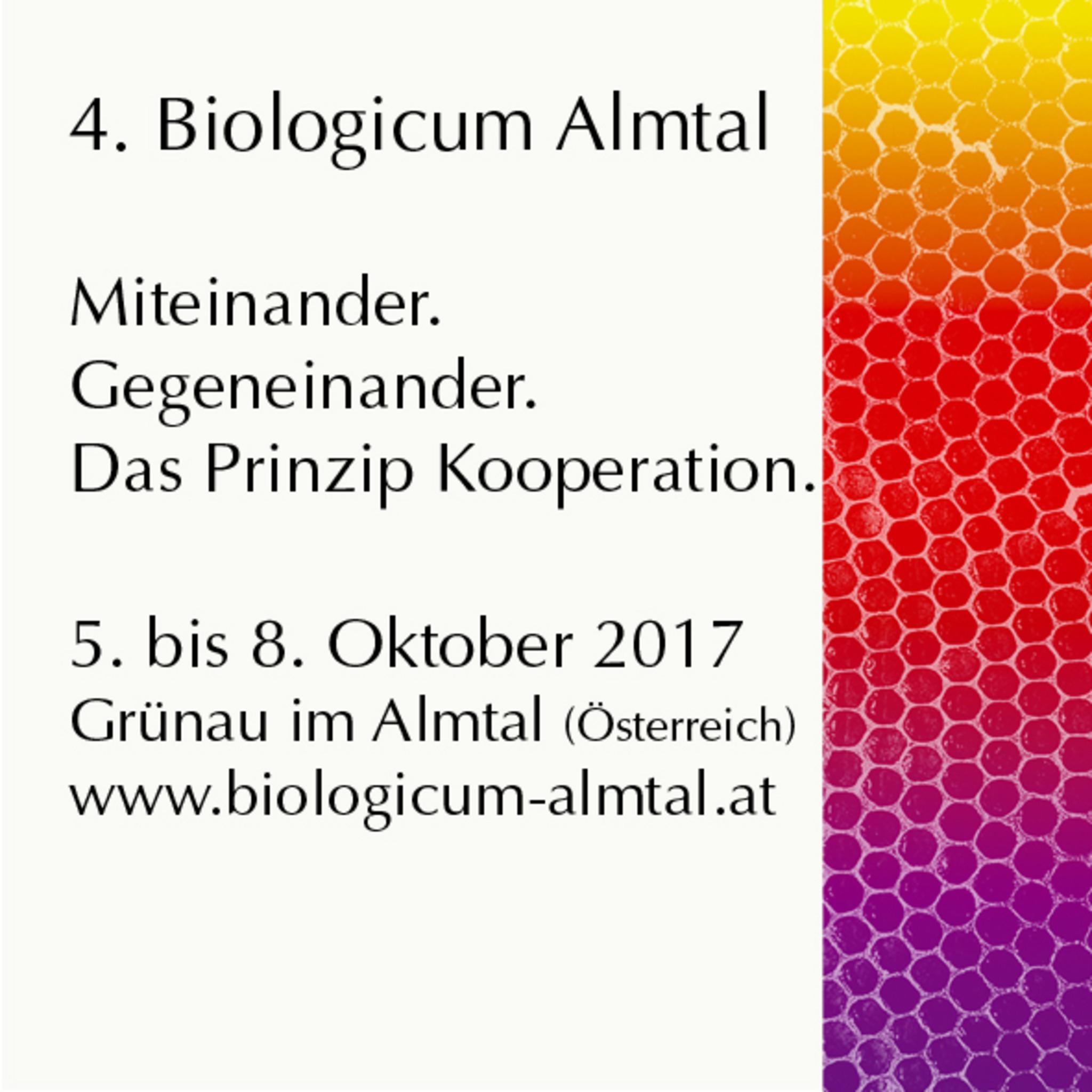5. Internationales Cinquecento Treffen in Vorchdorf im Almtal