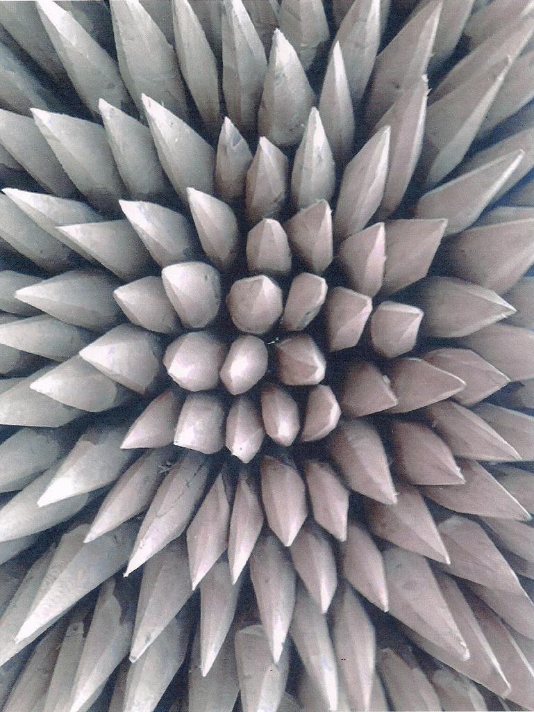 """Bild 42 aus Beitrag Mach mit und zeig uns dein Foto zum Thema """"Holz"""""""