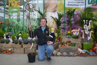 Gartenexperte Peter Loidl informierte über die neusten Trends in puncto Ziergehölze und Klassiker, die in keinem Garten fehlen dürfen.