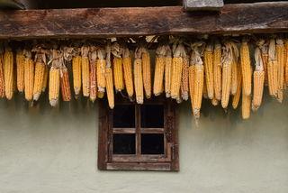 Das Freilichtmuseum Gerersdorf und das Bauernmuseum Jennersdofr geben Einblick in den bäuerlichen Alltag des alten Südburgenlands.