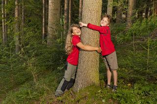 Die Wälder von Graz-Umgebung sind ideales Ausflugsziel und perfekte Erholungszone in einem.