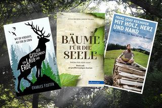 Büchertipps für jene, die sich den Wald bequem auf die Lesecouch holen wollen