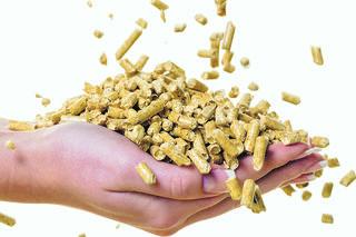 Biomasse ist noch vor Erdgas und Heizöl der wichtigste Energieträger für Raumwärme.