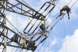 Ein Job wie jeder andere? Lukas Martin (li.) und Rainer Sengseis führen Wartungsarbeiten auf einem Strommasten in der Lobau durch.