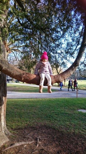 """Wald und Holz bereitet nicht nur Kindern Freude – auch Erwachsene freuen sich über kreative Geschenke """"aus dem Wald""""."""
