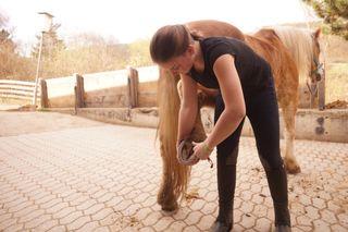 Reiterin Myriam Schmutzer beim Reitverein Ober-Wölbling