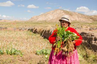 Eine bolivianische Bäuerin mit reicher Gemüseernte auf über 3000 m Seehöhe im Hochland von Bolivien.