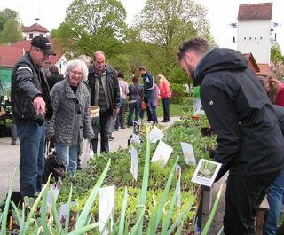 Viel Grün wartet am 23. April in Limbach.