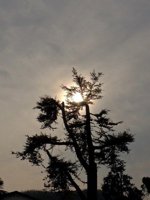 über Ostern hat sich die Sonne versteckt.