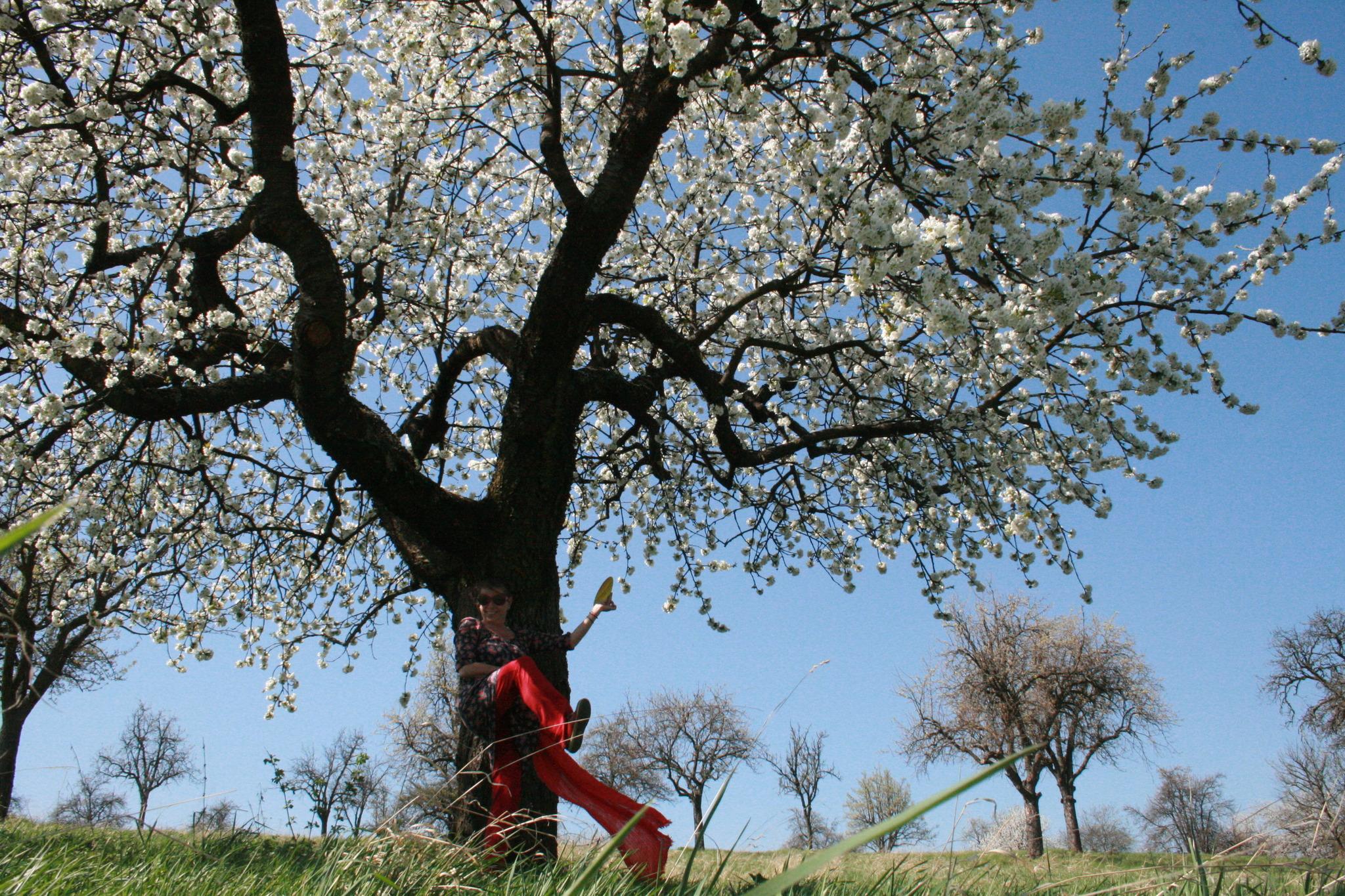 Flirt in Burgenland und Frauen und Mnner gesucht - flirt-hunter